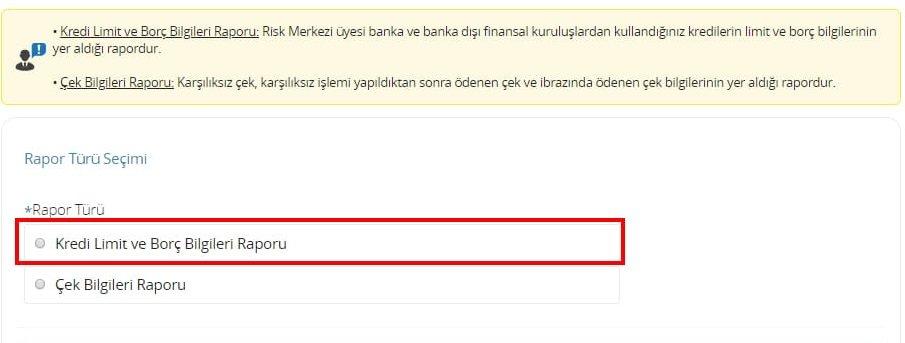 e-devlet kredi risk raporu