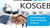 KOSGEB Desteği Hangi Sektörlerde Veriliyor?