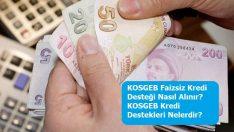 KOSGEB Faizsiz Kredi Desteği Nasıl Alınır? KOSGEB Kredi Destekleri Nelerdir?