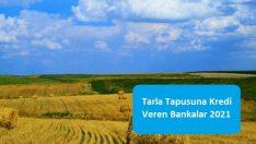 Tarla Tapusuna Kredi Veren Bankalar 2021