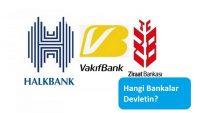 Hangi Bankalar Devletin?