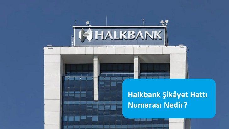 Halkbank Şikâyet Hattı Numarası Nedir?